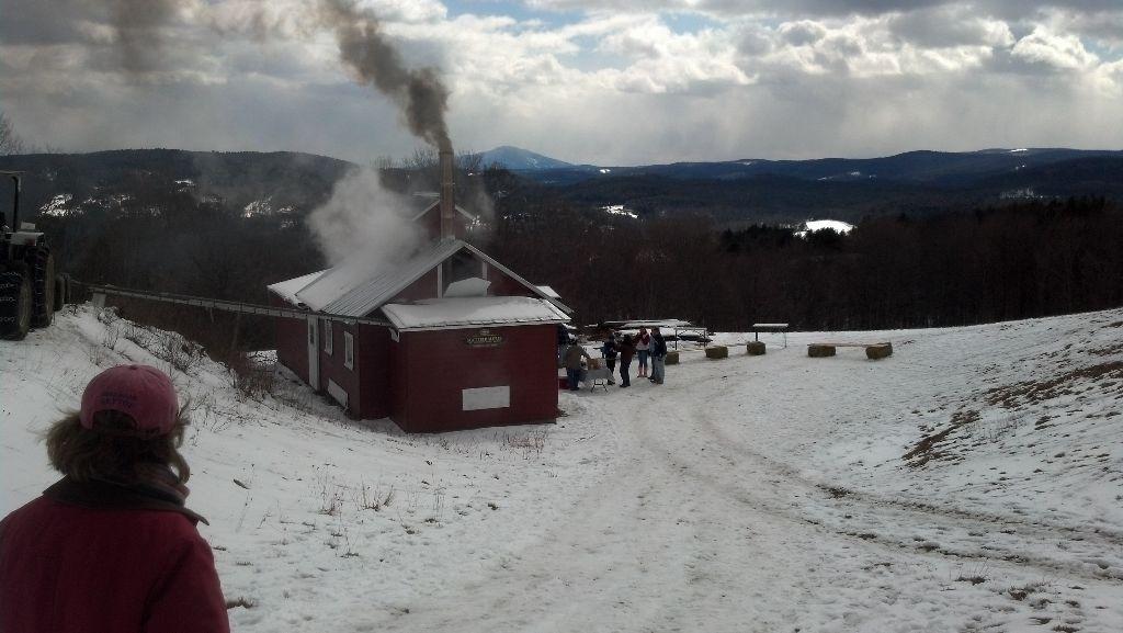 Sugar on Snow - Savage Hart Farm